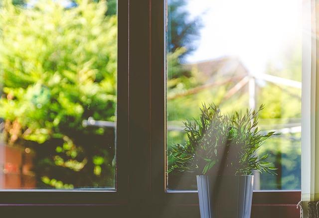 hnědé okenice